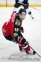 Хоккей: матчи Континентальной хоккейной лиги(КХЛ) вживую!
